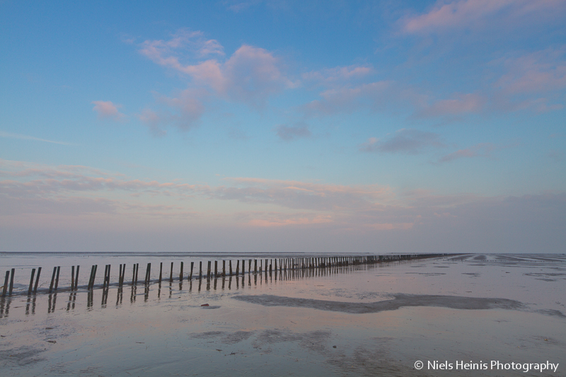 Poles lead the way - Wadden Sea