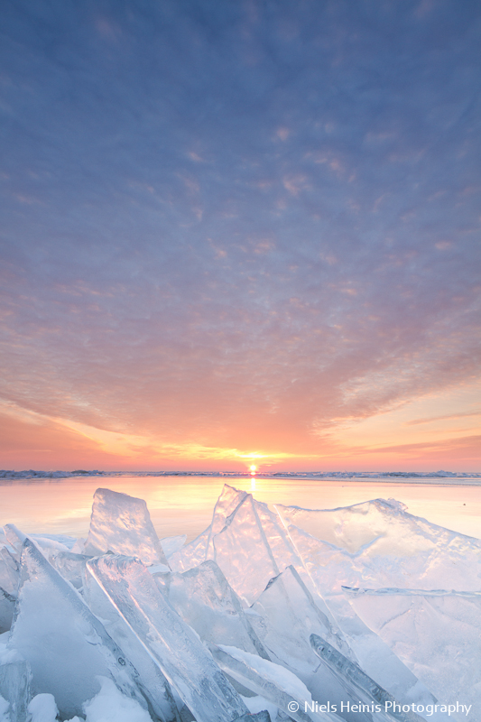 Arctic sunet