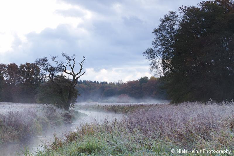 Autumn colours along a misty river