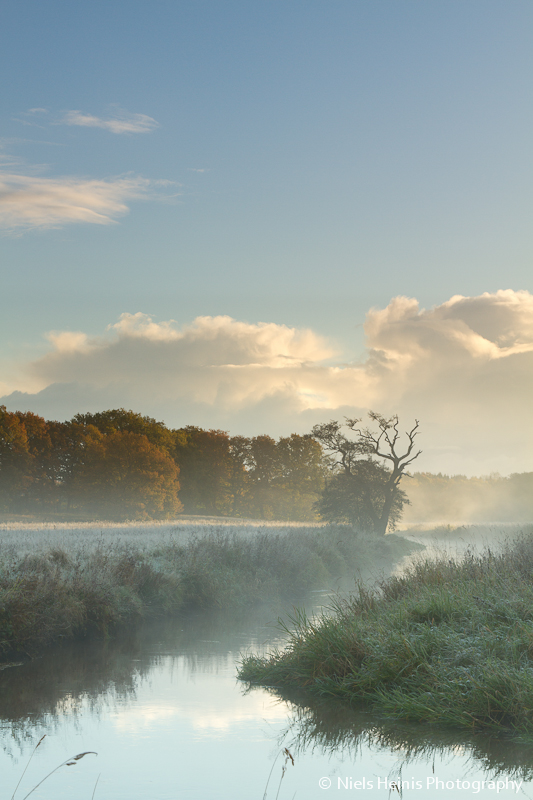 Misty autumn morning, Drentsche Aa, Oudemolen, The Netherlands