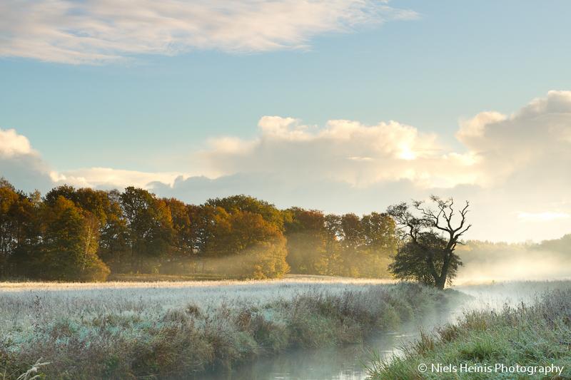Misty autumn morning, Drentsche Aa, Oudemolen, The Netherlands