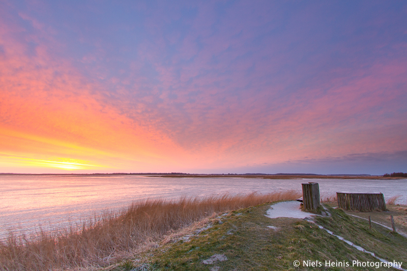 Siberian conditions at sunrise - National Park Lauwersmeer, Frisia, NL
