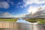Just before the rain - Onlanden, Drenthe, NL